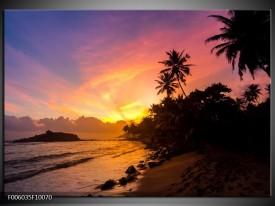 Glas schilderij Natuur | Oranje, Geel, Zwart