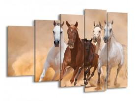 Canvas schilderij Paard | Bruin, Wit, Crème | 150x100cm 5Luik