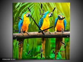 Wandklok op Canvas Vogels | Kleur: Groen, Oranje, Blauw | F006048C