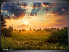 Glas schilderij Natuur | Bruin, Groen