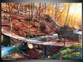 Foto canvas schilderij Herfst | Geel, Bruin