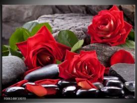 Glas schilderij Roos | Rood, Zwart, Groen