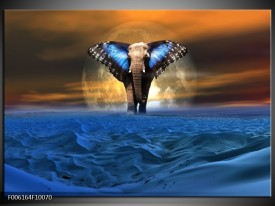 Glas schilderij Olifant   Blauw, Bruin