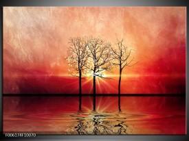 Foto canvas schilderij Abstract   Rood, Geel