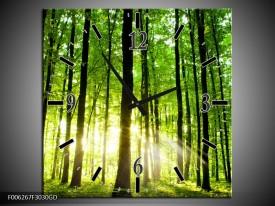 Wandklok op Glas Natuur | Kleur: Groen, Geel | F006267CGD
