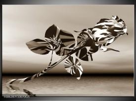 Glas Schilderij Bloem, Roos | Sepia