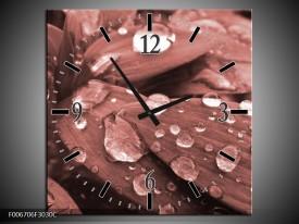 Wandklok Schilderij Bloem, Druppel | Rood, Bruin