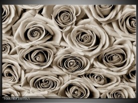 Glas Schilderij Roos, Bloem | Sepia