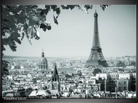 Canvas Schilderij Parijs, Steden | Grijs, Groen