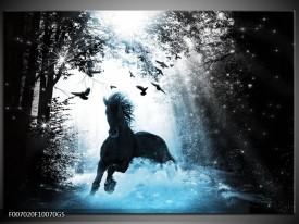 Glas Schilderij Paard, Dieren   Blauw, Zwart, Wit
