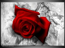 Glas Schilderij Roos, Bloem | Rood, Zwart, Wit