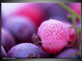 Canvas Schilderij Fruit, Keuken | Paars, Roze