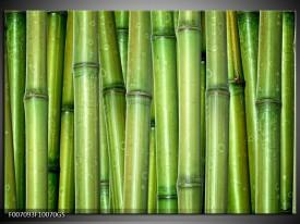 Glas Schilderij Bambus, Natuur | Groen