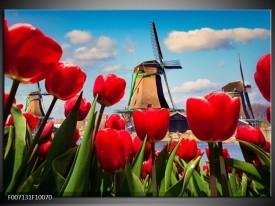 Canvas Schilderij Tulpen, Molen   Rood, Blauw, Grijs