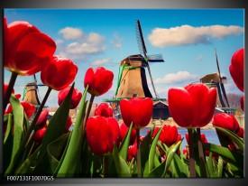 Glas Schilderij Tulpen, Molen | Rood, Blauw, Grijs