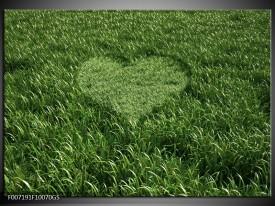 Glas Schilderij Gras, Hart | Groen