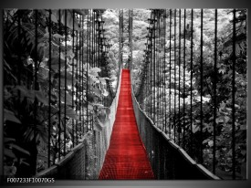 Glas Schilderij Brug, Natuur | Zwart, Wit, Rood