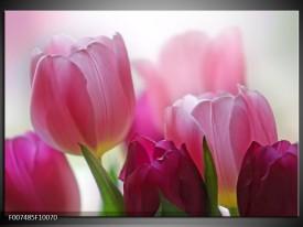 Canvas Schilderij Tulpen, Bloemen | Roze, Paars