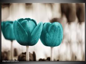 Glas Schilderij Tulpen, Bloemen | Turquoise, Sepia