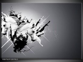 Glas Schilderij Design, Paard | Zwart, Wit, Grijs