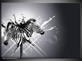 Glas Schilderij Modern, Zebra   Zwart, Wit, Grijs