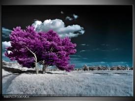 Glas Schilderij Boom, Natuur | Paars, Blauw, Grijs