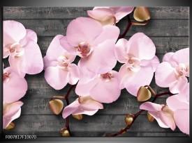 Canvas Schilderij Orchidee, Bloemen | Grijs, Roze
