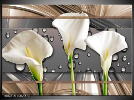 Glas Schilderij Bloemen, Modern   Grijs, Bruin