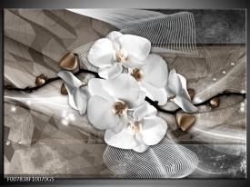 Glas Schilderij Orchidee, Modern | Wit, Grijs