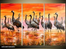 Acryl Schilderij Vogels   Oranje, Geel, Bruin   120x80cm 3Luik Handgeschilderd