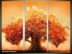 Acryl Schilderij Boom | Bruin, Oranje | 120x80cm 3Luik Handgeschilderd