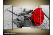 OP VOORRAAD Foto canvas schilderij Roos | 150x80cm 5pcsv2 | F000484
