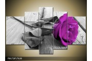 OP VOORRAAD Foto canvas schilderij Roos | Kleur: Paars, Grijs | F001728