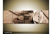 OP VOORRAAD Foto canvas schilderij Roos | Kleur: Sepia, Bruin | F001895