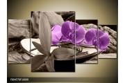 OP VOORRAAD Foto canvas schilderij Orchidee | Kleur: Paars, Grijs | F004578