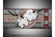 OP VOORRAAD Foto canvas schilderij Orchidee | 120x50cm | F006261