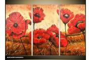 Acryl Schilderij Klaproos | Rood, Bruin | 120x80cm 3Luik Handgeschilderd