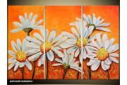 Acryl Schilderij Natuur | Oranje, Wit | 120x80cm 3Luik Handgeschilderd