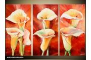 Acryl Schilderij Natuur | Rood, Geel | 120x80cm 3Luik Handgeschilderd