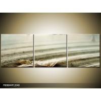 OP VOORRAAD Foto canvas schilderij Vogels | Kleur: Wit, Grijs | F000844