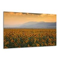 Canvas schilderij Zonnebloemen | Geel, Bruin, Grijs | 120x70cm 1Luik