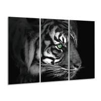 Glas schilderij Tijger | Wit, Zwart, Grijs | 120x80cm 3Luik