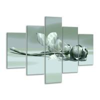 Glas schilderij Roos | Grijs, Wit | 100x70cm 5Luik