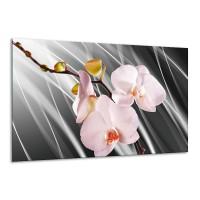 Glas schilderij Orchidee | Grijs, Roze, Wit | 120x70cm 1Luik