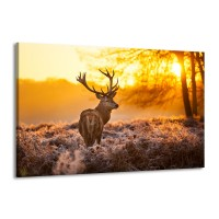 Canvas schilderij Hert | Bruin, Geel | 140x90cm 1Luik