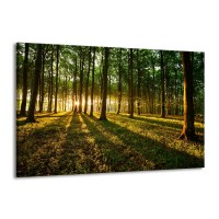 Canvas schilderij Natuur | Groen, Geel | 140x90cm 1Luik